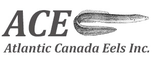 Atlantic Canada Eels Inc